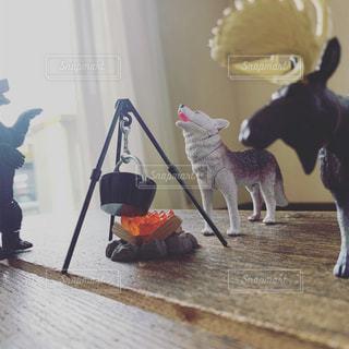部屋に立っている犬の写真・画像素材[2457905]