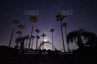南国風景と星空の写真・画像素材[1041267]