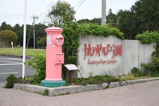 ピンクのばら色丸ポストの写真・画像素材[1101324]
