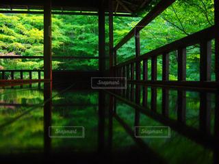 瑠璃光寺の写真・画像素材[1040349]