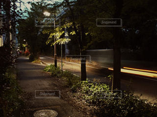 歩道と車道の写真・画像素材[1136572]
