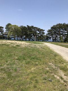 草のフィールドの写真・画像素材[1040505]