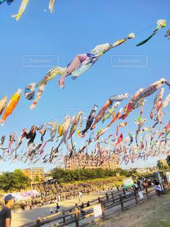 空中に凧の飛行の人々 のグループの写真・画像素材[1039450]