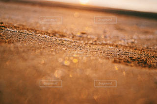 砂浜と夕陽の写真・画像素材[1039370]