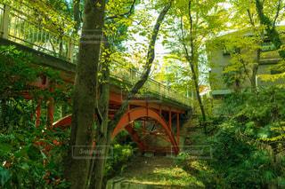 ジブリの橋の写真・画像素材[1039497]