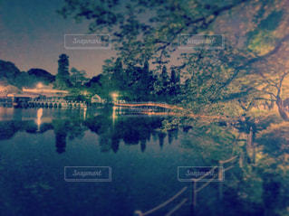 水の体の上の橋の写真・画像素材[1039766]