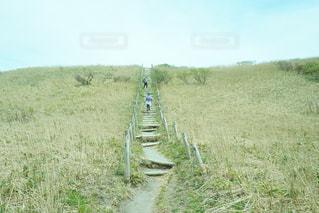 島根県三瓶山   山頂付近の写真・画像素材[1066593]