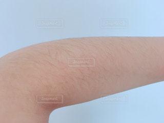 腕のムダ毛の写真・画像素材[1125998]