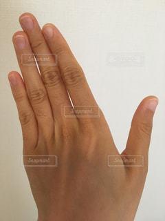 指のムダ毛の写真・画像素材[1126011]