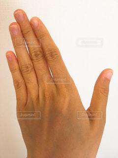 指のムダ毛の写真・画像素材[1126012]