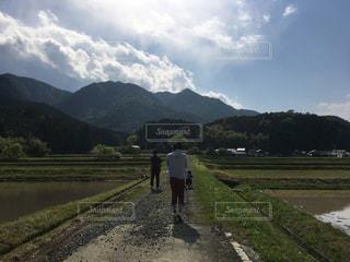 田んぼを散歩の写真・画像素材[1193740]
