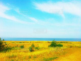 水平線と青空の写真・画像素材[1040243]