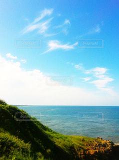 日本海と草木の写真・画像素材[1040934]
