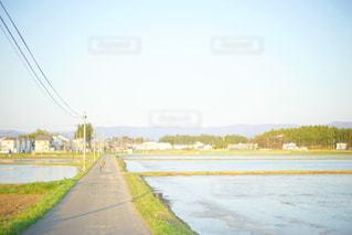 田舎の田んぼ道の写真・画像素材[1040373]