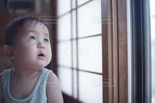 障子を見上げる赤ちゃんの写真・画像素材[1388878]