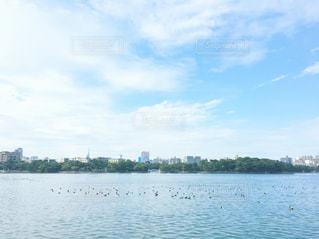 公園と池の写真・画像素材[1041130]