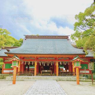 住吉神社の写真・画像素材[1041131]