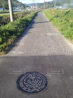 道の端に木のパスの写真・画像素材[1041248]