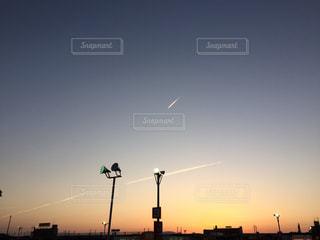 日没の前にトラフィック ライトの写真・画像素材[1040957]