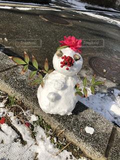 雪だるまの写真・画像素材[1041505]