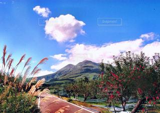 岩木山のある風景の写真・画像素材[1041734]