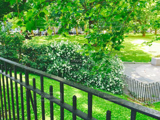 近くの緑のフェンスをの写真・画像素材[1042961]
