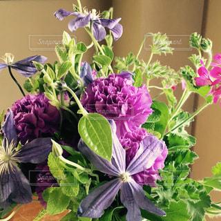 紫のbouquet花の写真・画像素材[1042971]