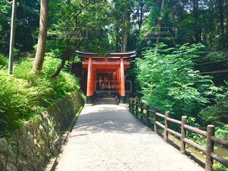 嵐山近くの神社鳥居の写真・画像素材[1044005]