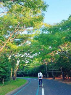 自然の中を歩く男性の写真・画像素材[1067761]