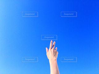 空へ手を伸ばすの写真・画像素材[1120402]
