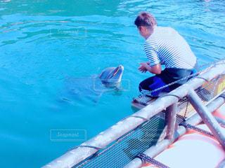 イルカと男性の写真・画像素材[1120478]