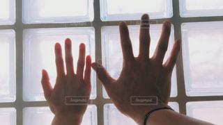 男女の手の写真・画像素材[1140977]