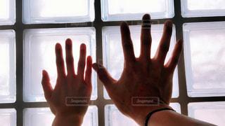 男女の手の写真・画像素材[1140980]