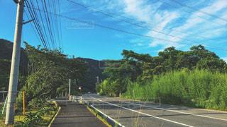 田舎の道路の写真・画像素材[1250504]