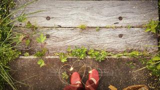 かわいい階段♡の写真・画像素材[1250816]
