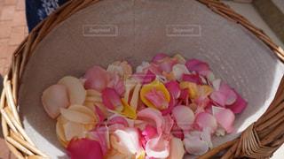 フラワーシャワーの花びらの写真・画像素材[1043183]