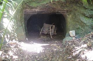 山の中にある大砲の写真・画像素材[1043412]