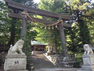 神社の鳥居の写真・画像素材[1060967]