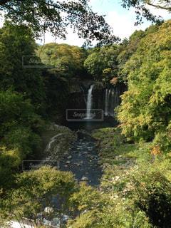 森の中の大きな滝の写真・画像素材[1043326]