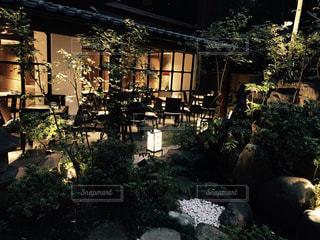 THE JAPANの写真・画像素材[1091248]