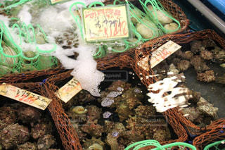海産物市場 - No.1043489