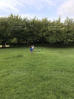 走り回る子供たちの写真・画像素材[1043811]