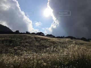 空には雲 ススキ野の光景 - No.1043907