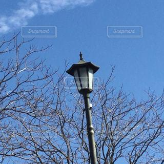 舞鶴公園の街灯の写真・画像素材[1045498]