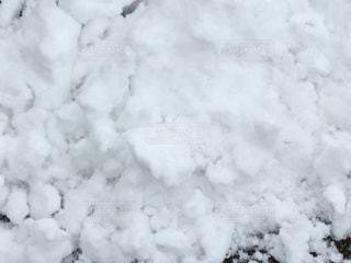 福岡に雪が積もった日 - No.1045575