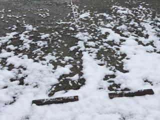雪に覆われた駐車場の写真・画像素材[1045582]