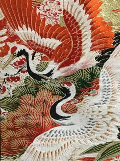 鶴の帯の写真・画像素材[1048805]