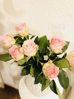 花瓶に挿したバラの花の写真・画像素材[1043847]