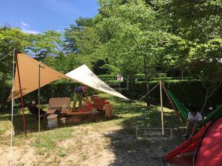 夏キャンプの写真・画像素材[1044452]