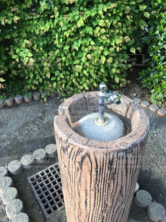 水飲み場の写真・画像素材[1177926]